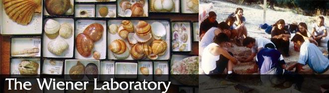 Wiener Laboratory
